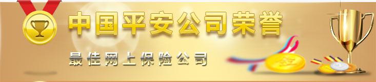 中国平安公司荣誉:最佳网上保险公司